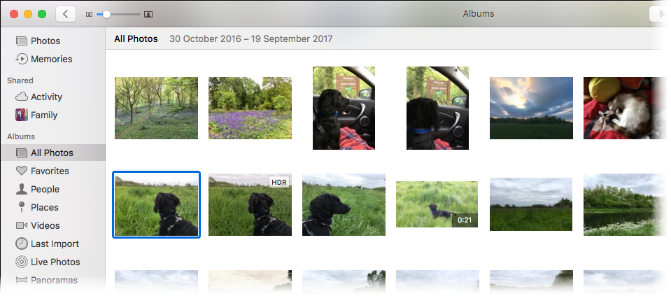 Screenshot of Photos on the Mac