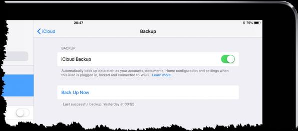 Screenshot of iPad backup