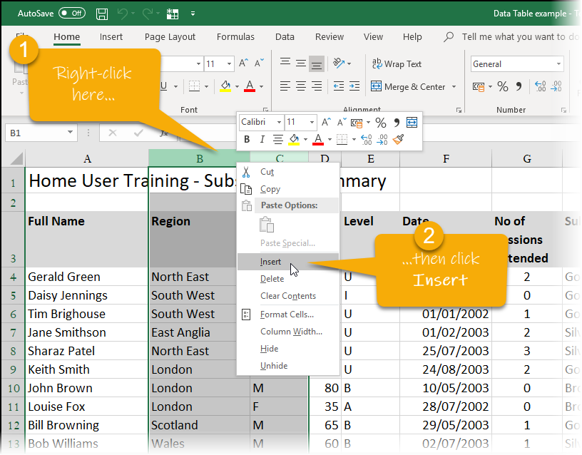 Inserting 2 new columns in Excel