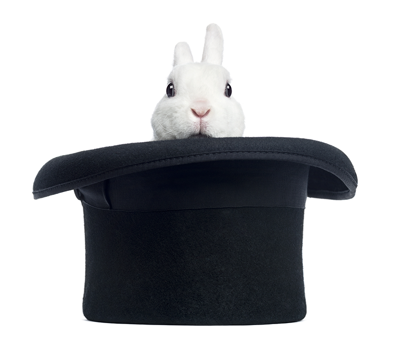 Rabbit peeping out of a magician's hat